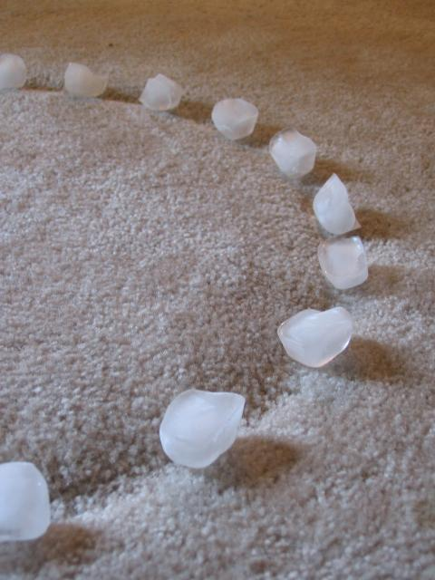 DIY Ice Cube Carpet Fix from www.rentfluff.com